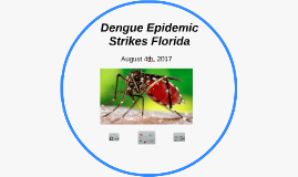 Dengue Epidemic Strikes Florida
