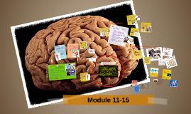 Module 11-15 (Not done)