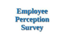 Employee Perception Survey