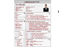 CV of Feri Alimudin