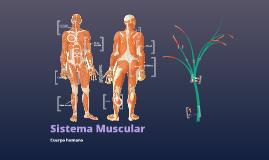Copy of sistema muscular