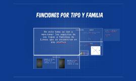 FUNCIONES POR TIPO Y FAMILIA