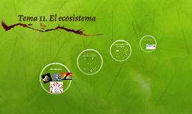 Tema 11. El ecosistema