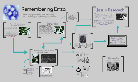 Remembering Enza: Historiography of the 1918 Influenza