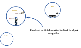 Visual and tactile information feedback for object recogniti