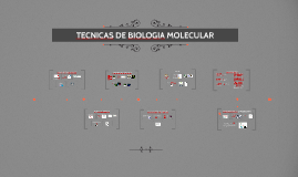 TECNICAS DE BIOLOGIA MOLECULAR
