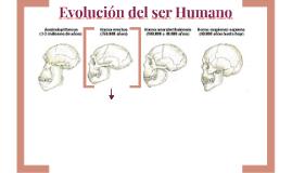 Evolucion del ser Humano