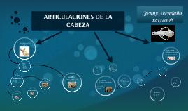 ARTICULACIONES DE LA CABEZA
