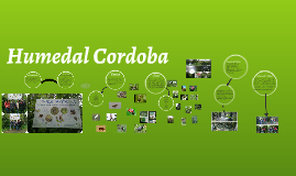 Copy of Humedal Cordoba