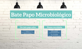 Bate Papo Microbiológico