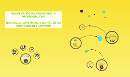 IDENTIFICACIÓN DEL CERTIFICADO DE PROFESIONALIDADDenominac