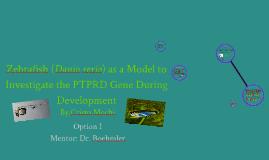 Zebrafish (Danio rerio) as a Model to Investigate the PTPRD