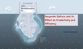 Corporate Culture and its Effect on Productivity