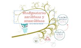 Copy of Biodigestores