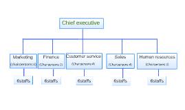 chief excutive