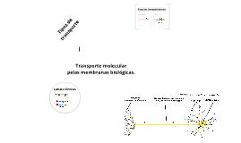 transporte molecular pelas membranas biológicas