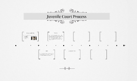 Juvenile Court Process