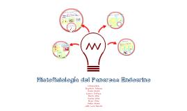 Histofisiología del pancreas endocrino