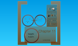 Chapter 11 target 4 and 5