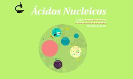 Copy of Acidos Nucleicos