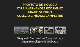 Ataque de Farc causó en Tumaco el peor daño ecológico de la