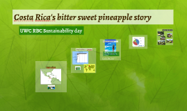 Costa Rica´s bitter sweet pineapple story