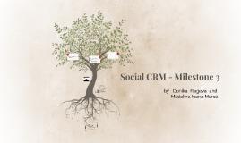 Social CRM - Milestone 3