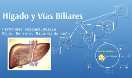 Hígado y Vias Biliares