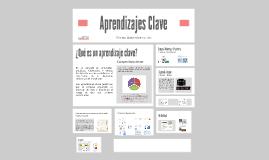 Copy of Aprendizajes Clave