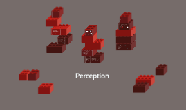 Chapter 4- Perception