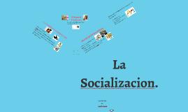 socializacion II Nivel