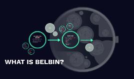 WHAT IS BELBIN