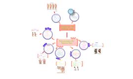 Copy of Enfermedades Y Accidentes Del Sistema Oseo