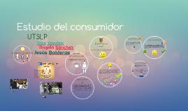 Copia de Copy of Estudio del consumidor