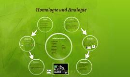 homologie und analogie by thanja thayalakumar on prezi. Black Bedroom Furniture Sets. Home Design Ideas