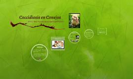 Copy of Coccidiosis en Conejos