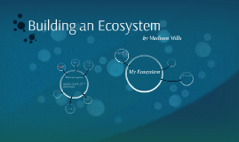 Building an Ecosystem