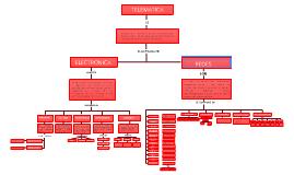 Copy of  MAPA CONCEPTUAL TELEMATICA  2012