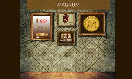 Copy of MAGNUM