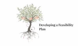 Developing a Feasibility Plan