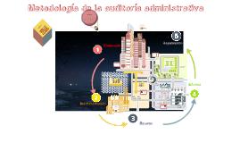 Copy of metodología de la auditoría administrativa