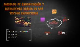 MODELOS DE ORGANIZACIÓN Y ESTRUCTURA BÁSICA DE LOS TEXTOS EX