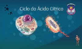 Ciclo do Ácido Cítrico