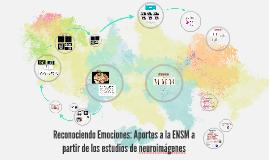 Aportes a la ENSM a partir de los estudios de neuroimagen