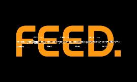 FEED Timeline