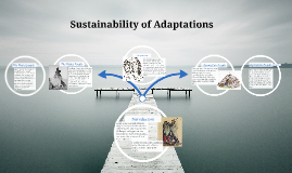 Sustainability of Adaptations