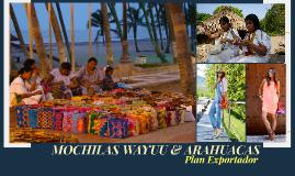 PLAN EXPORTADOR: MOCHILAS WAYYU & ARHUACAS