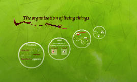 The organisation of living things