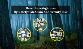 Breed Investigations