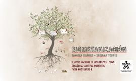Copy of BIOMETANIZACIÓN